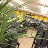 purfit_laakirchen-gmunden_trainingsbereich